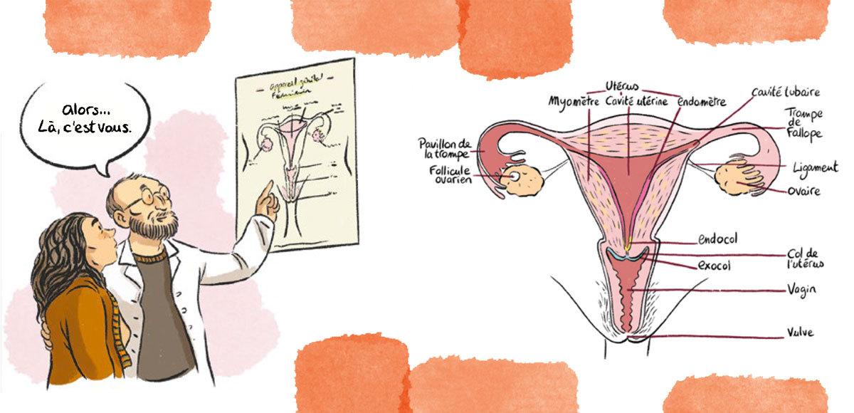 Le Choeur des Femmes : guide illustré sur leur santé intime